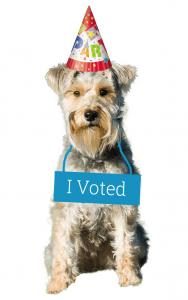Pembroke I Voted
